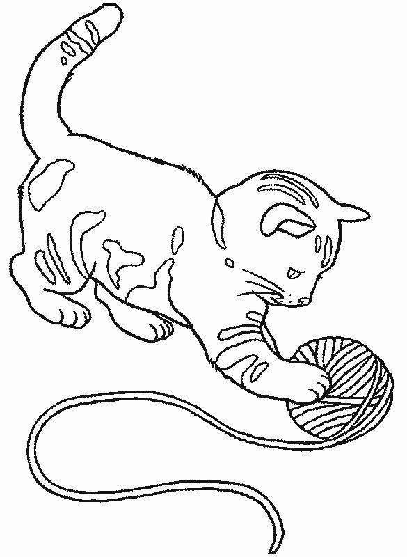 коты раскраски картинки